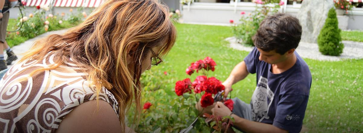 Domus-La-Tzoumaz-jardin-roses_cNathalie-Pallud
